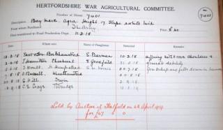 Horse Hire Scheme, 1918 | HALS Ref AEC/34