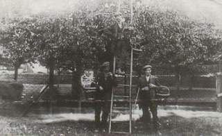 The Cherry Orchard c1925 with Harry Matthews, Jess Smith and another member of the Matthews family | Leverstock Green History