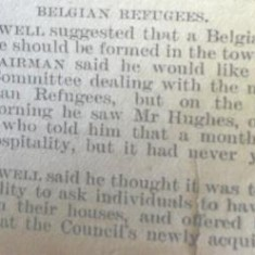 Belgian Refugee Committee proposal | Herts and Essex Observer Nov 1914
