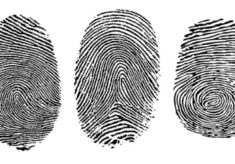 Fingerprints never let them down