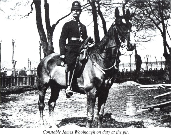 James Arthur Woolnough 1911 | Herts Police Historical Society
