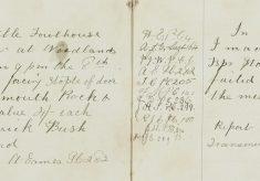 Fowls stolen, Woodlands, Bishop's Stortford