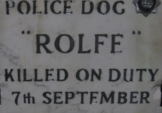 Murder Of A Police Dog