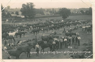 Horse lines of the Staffordshire Yeomanry at Bishop's Stortford | BISHM 566