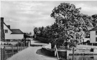 Sheering Mill